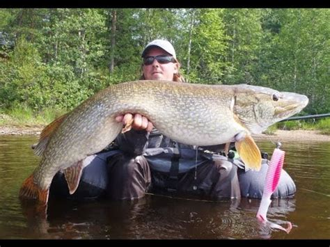 Angeln auf große Hechte / Fishing for big Pike - YouTube