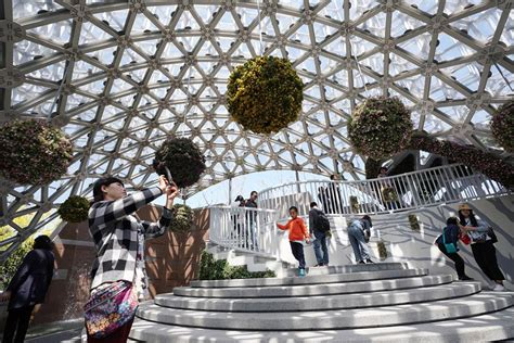 Over 300,000 tourists visit Beijing horticultural expo