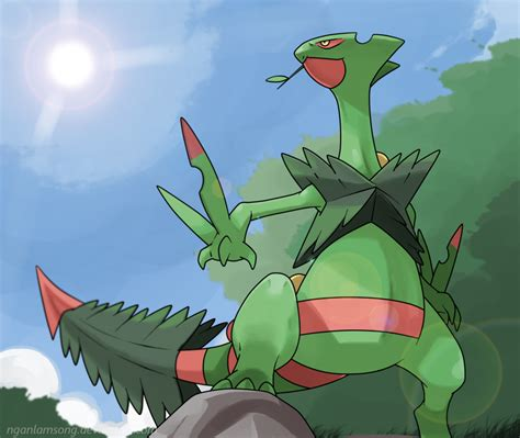 XY OU - My Mega Sceptile Team | Smogon Forums