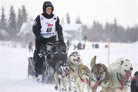 Iditarod restart moved to Fairbanks | Local News Stories