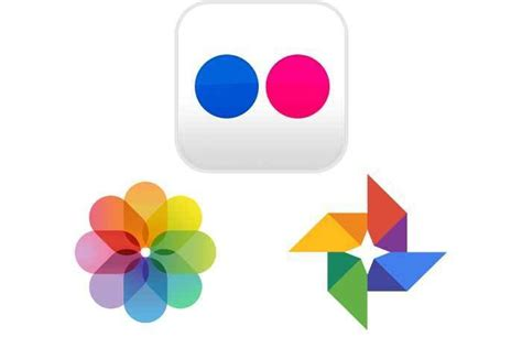 How to download your Flickr photo library and transfer it