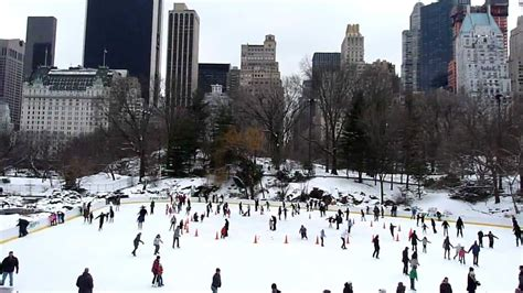 NUEVA YORK EN MOVIMIENTO - CENTRAL PARK NEVADO - ICE